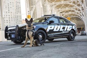 2017 Ford Fusion - Police Responder Hybrid